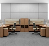 global princeton workstation