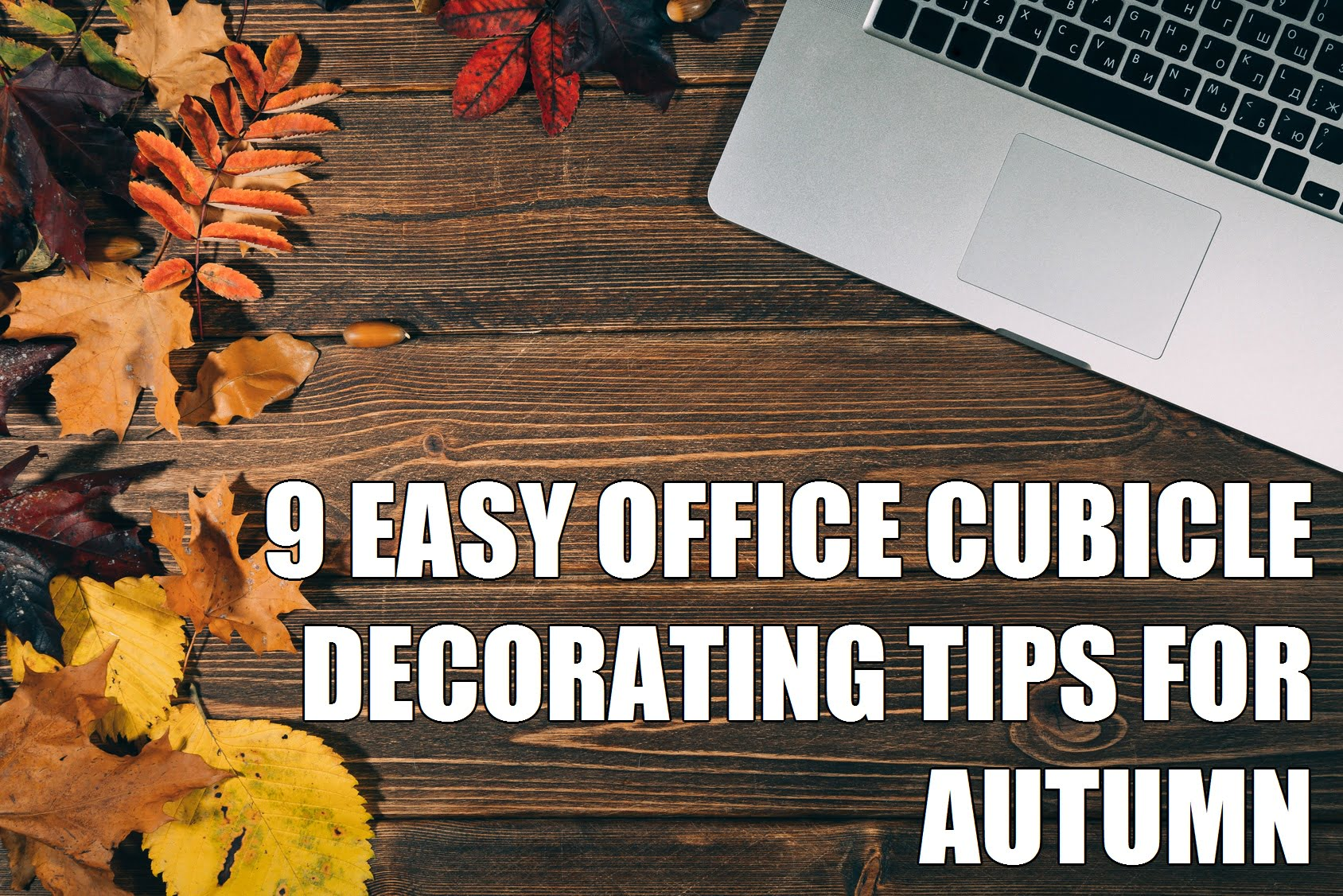 9 Easy Office Cubicle Decorating Tips For Autumn