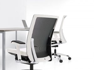 Ergonomic Desk Chairs Austin TX